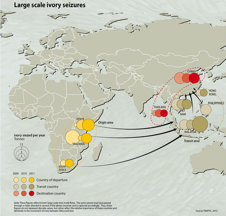 An alarming map of the global ivory trade that killed 17,000 elephants in one year | Washington Post | Interview Tips for High School Students | Scoop.it