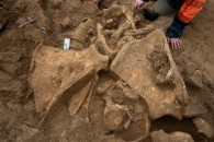 A mammoth and humans on the banks of the Marne | Archeology | Scoop.it