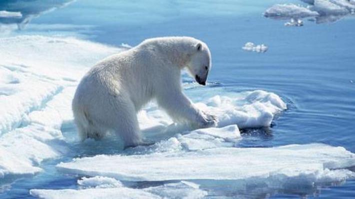 Comment faire face à une marée noire en Arctique ? | Océan et climat, un équilibre nécessaire | Scoop.it