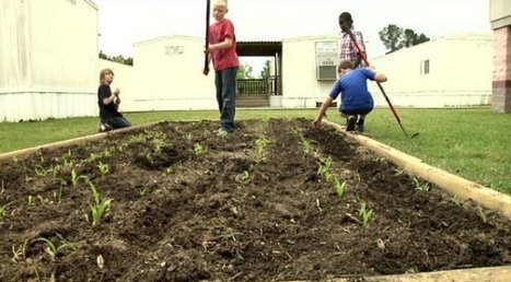 Students gain edge in life through agriculture - WRCB-TV | The Responsible Entrepreneur | Scoop.it
