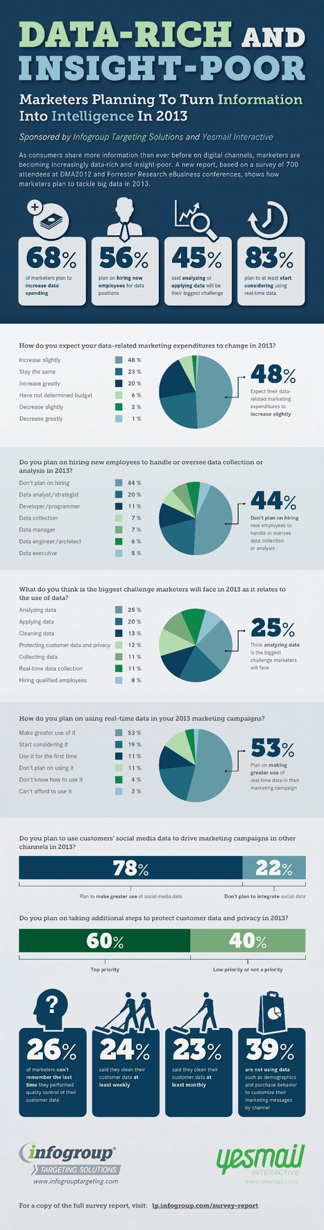 Data-Rich and Insight-Poor [Infographic] | Integrated Brand Communications | Scoop.it
