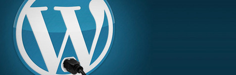 Scopri il tema Wordpress e i Plug-In che usa il tuo concorrente | ToxNetLab's Blog | Scoop.it