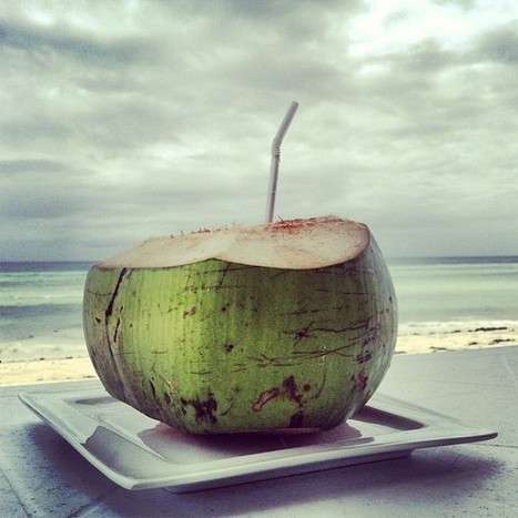 Buko juice at the #beach #bohol #anda (at Quinale... | Anda Bohol | Scoop.it