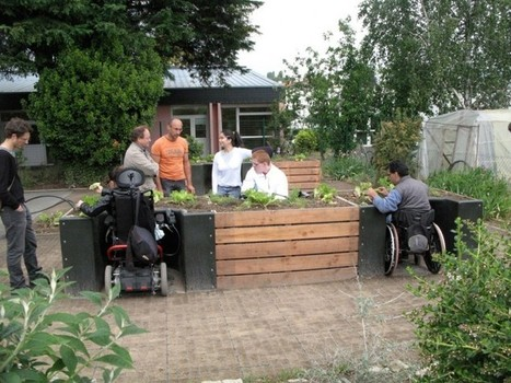 Terraform Wheelchair Accessible Garden KitUniversal Design Style | Gardening | Scoop.it