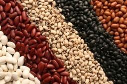 A Protein Cost Comparison | Protein comparison | Scoop.it