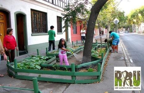 Agricultura Urbana: Huertos en los lugares menos pensados -  Colombia | Cultivos Hidropónicos | Scoop.it