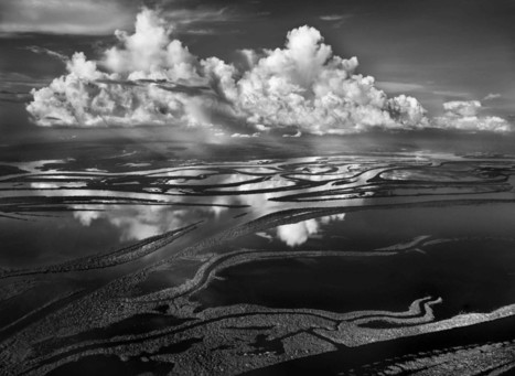 Sebastião Salgado by Alison Stieven-Taylor | Le Journal de la Photographie | Explore & document the World | Scoop.it