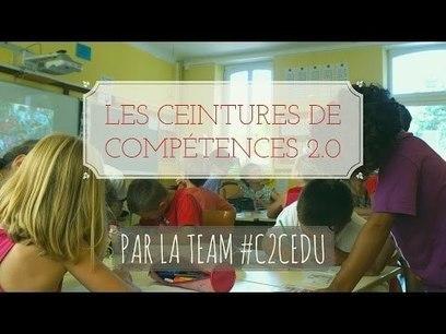 Présentation du dispositif de ceintures de compétences 2.0 [vidéo] | Actualité des TICE | Scoop.it