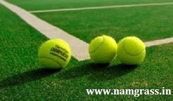 Artificial Turf India | Artificial Grass India | Scoop.it