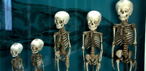 Bizarre Museen: Grusel-Tourismus in Thailand boomt | Medical Museums Worldwide Discovery | Scoop.it