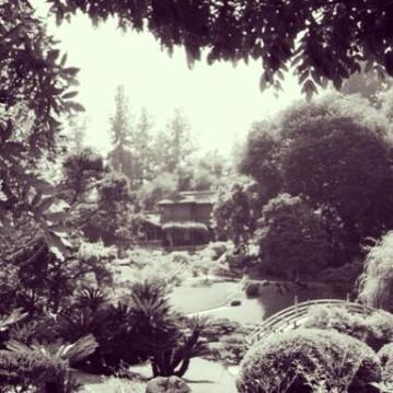 Twitter / MsMariaE: The #Japanese #Garden at the ... | Japanese Gardens | Scoop.it