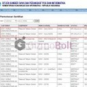 Sony D2502 and Sony D2533 spotted on Indonesian Postel | Gizmo Bolt | Scoop.it