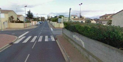 Hérault : la bagarre entre chiens finit par un coup de fusil entre voisins | Les Informations sur la voie de notre monde. | Scoop.it