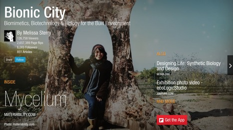 Bionic City magazine, Jan 2015   Smart devices and technology solutions   Scoop.it