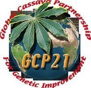 Cassava Blog by Agro2 | Agricultural Biodiversity | Scoop.it