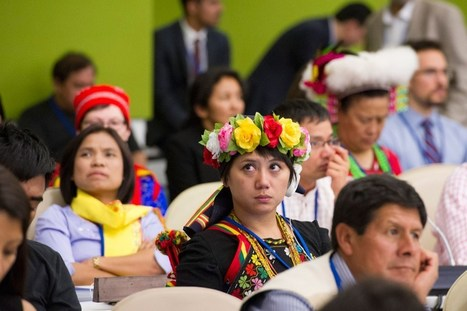 Indigenous peoples' voices must be heard at Paris climate change conference, UN agency says | Increase Biodiversity - Species Protection, Preservation, & Promotion | Scoop.it