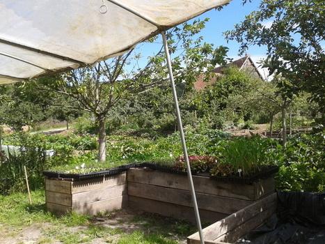 INRA - Ferme du Bec Hellouin : la beauté rend productif | Veille Scientifique Agroalimentaire - Agronomie | Scoop.it