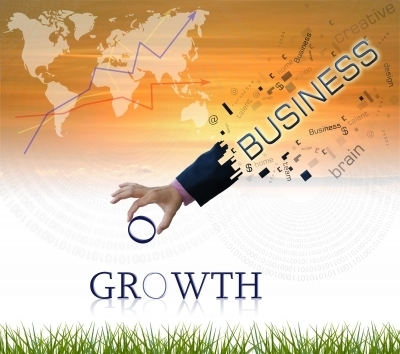 Business Growth, Small Business Growth Assessment Program - Way To Grow Online | Innovative Solutions to Grow your Business online | Scoop.it