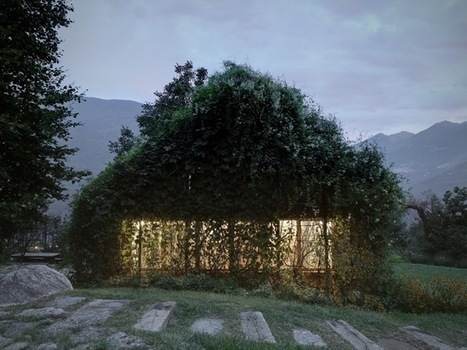 Green Box is a private building designed to be consumed by vegetation | The Architecture of the City | Scoop.it