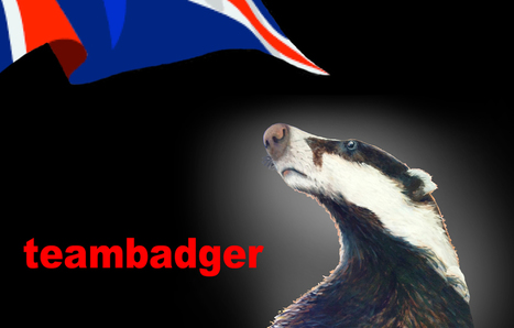 Team Badger is a coalition of groups united to stop the badger cull | Life on Earth | Scoop.it
