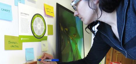 Biomimicry DesignLens :: Biomimicry 3.8 | BIOMIMICRY | Scoop.it
