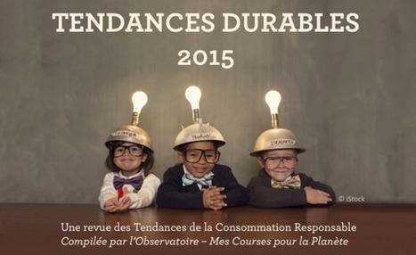 Étude : Les Tendances de la Consommation Durable en 2015   Innovations et Développement durable   Scoop.it