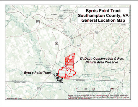 Conservation group buys 443 acres of forest, swamp | HamptonRoads.com | PilotOnline.com | Battle Creek Cypress Swamp | Scoop.it