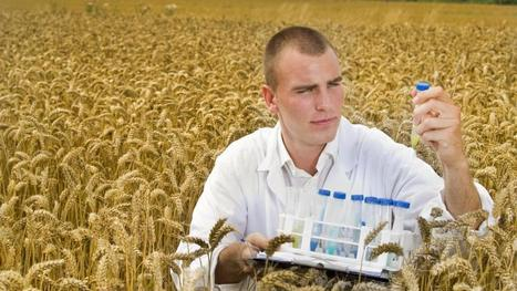 BBSRC mention:  interaction between agri-food sector and graduates | BIOSCIENCE NEWS | Scoop.it
