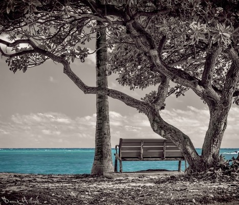 An Ocean View | Recalibration Photography | Scoop.it