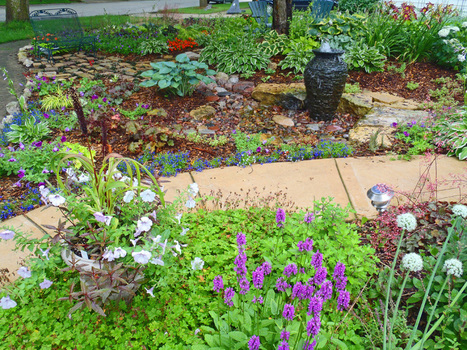 How To Keep A Pond or Rainwater Cistern Clean of Algae – A Season Recap   Annie Haven   Haven Brand   Scoop.it
