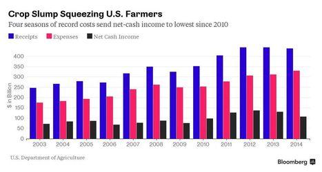 U.S. Farmers Watch $100 Billion-a-Year Profit Fade Away | Risk-Adjusted Returns | Scoop.it