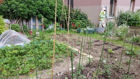 Découverte champêtre des jardins partagés du 14ème arrondissement de Paris - Carnets de Week-Ends | Paris Culture | Scoop.it