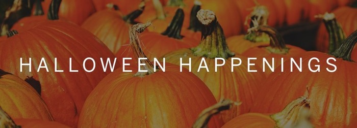 Find Halloween Events in SF | Bornstein  Law + BPG Insights | Scoop.it