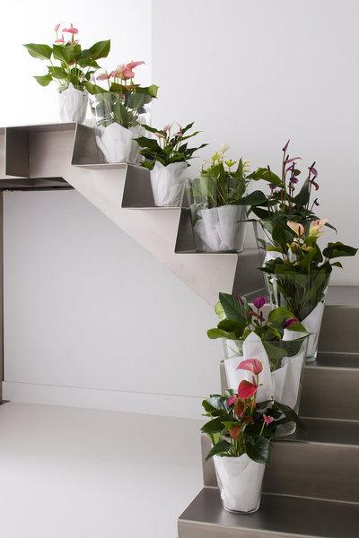 [Déco] Un escalier haut en couleurs ! | Immobilier | Scoop.it