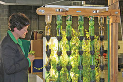 USDA official visits Chicago State University   Aquaponics World View   Scoop.it