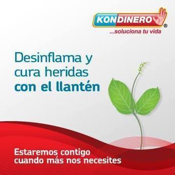 Desinflama y cura heridas con el llantén | Kondinero | Scoop.it