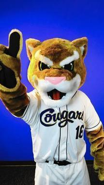 Kane County Cougars unveil fierce, 'more athletic' mascot | Mascots | Scoop.it
