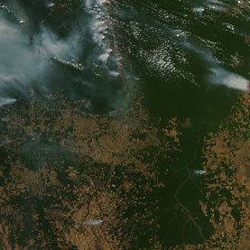 In Brazil, Attacking the Forest to Save It: Scientific American   Sustain Our Earth   Scoop.it