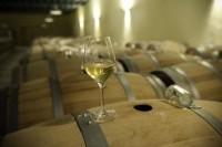 Vinbio   Vins nature, Vin de plaisir   Scoop.it