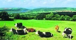 Ireland should  lead the way on climate smart farming, says ecology expert | The Irish Times | CGIAR Climate in the News | Scoop.it