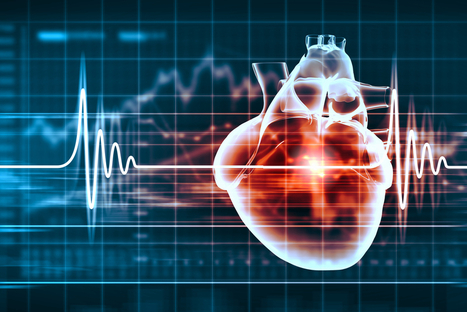 Lifescience, ecco CVLab, l'incubatore di startup cardiovascolari | Startup Italia | Scoop.it