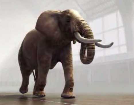 Elephant Jumping on Trampoline | Marketing Done Right | Scoop.it