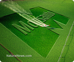 Monsanto lies through their teetrh | Global resource plunder and poisoning of natural resources | Scoop.it