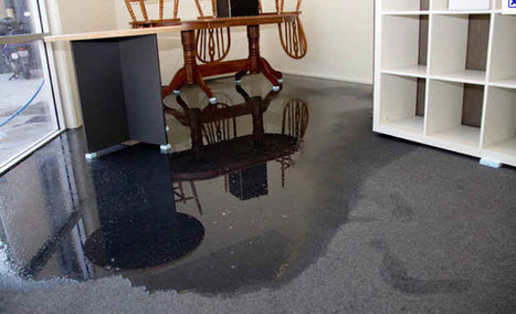 Flood Water Removal   Cleaning Services - Water Recovery Christchurch   It's all about Carpets   Scoop.it