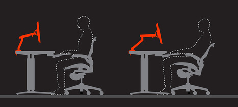 The Eyes Always Win – Research – Herman Miller | Facility Issues for your Workplace | Scoop.it