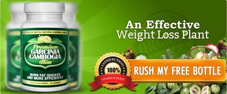 Garcinia cambogia Free Trial Review An Ideal Formula To Lose Weight! | ohevu cewhou, I | Scoop.it