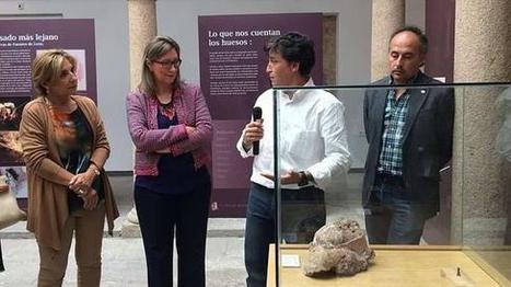 Cultura muestra la falange de un homínido encontrada en la Cueva ... - Hoy Digital | historian: science and earth | Scoop.it