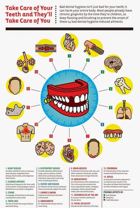 Take Car of Your Teeth Take Care of Your Teeth and They'll Take Care of You   Online Marketing   Scoop.it