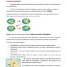 TECTÓNICA DE PLACAS Y VULCANISMO