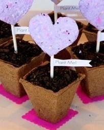 Semenke u papiru. Idealan poklon za negovatelje vrta. | Гајење биља на природан начин | Scoop.it